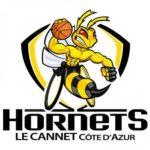 Beach Flags Hornets