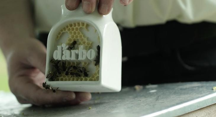 Actu miel packaging