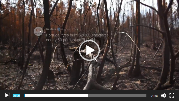 sensibilisation feu de forêt Portugal WWF