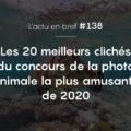 20 clichés du concours photo animale